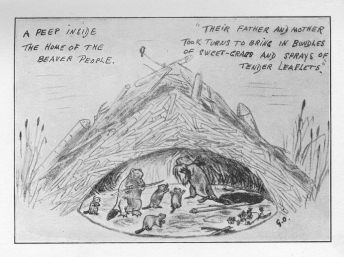 the adventures of sajo and her beaver people, by grey owl Muskrat Trapping Beaver a peep inside the home of the beaver people their father and mother took turns